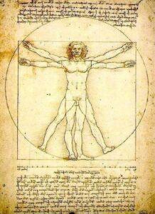 L'Homme de Vitruve, Léonard de Vinci