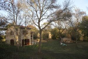Une maison, des arbres