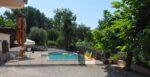 A pool, trees