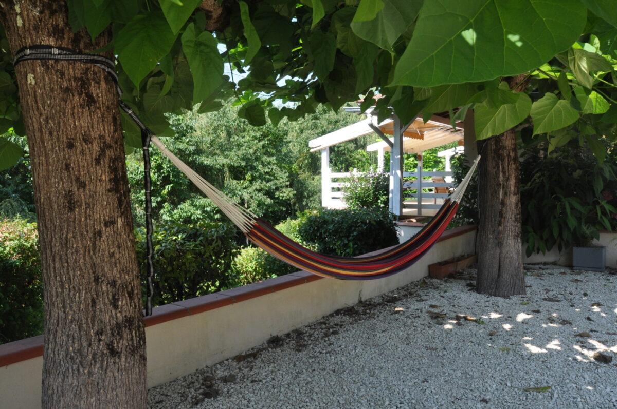 A hammock, trees