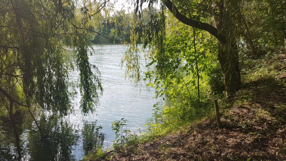Vue sur le Tarn depuis le parc à Villemur