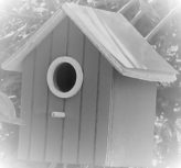 Une maison pour oiseaux