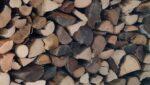 Gros plan sur du bois coupé et rangé